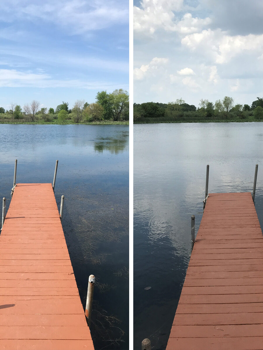 Before and After Pond Algae Treatment